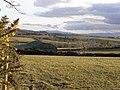 A view over Listullyard Townland - geograph.org.uk - 1741580.jpg