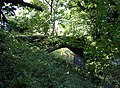 Abandoned Railway Bridge, Stafford - geograph.org.uk - 1010129.jpg