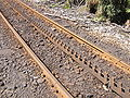 Abt rack rail.jpg