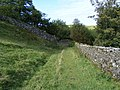 Access path to Shap Abbey - geograph.org.uk - 1521980.jpg