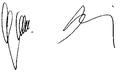 Accession Treaty 2003 FA Belgium.png