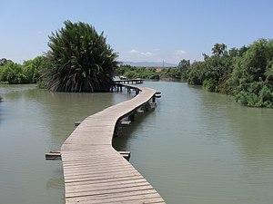 Tel Afek - Ein Afek nature reserve