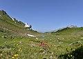 Albona Stubiger Alpe, Lüftungsschacht Arlbergtunnel 1.JPG