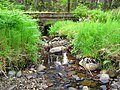 Alltcailleach Forest - geograph.org.uk - 866357.jpg
