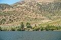 Alto Douro Vinhateiro DSC00372 (36492507034).jpg