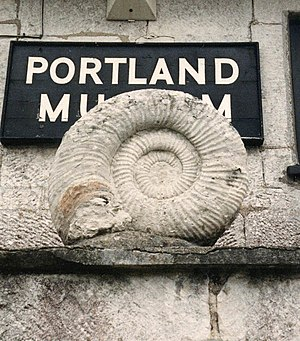 Portland Museum, Dorset - A large ammonite, 0.6 metres (2 feet) across, outside Portland Museum.