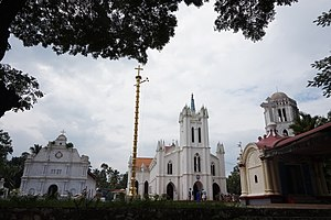 Basilica of Our Lady of Snows, Pallippuram - An Overall View of the Basilica Complex