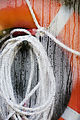 An orange lifesaver with a wet sailing nylon rope, Auckland - 0569.jpg