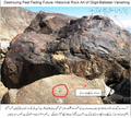 Ancient Rock Art Gilgit-Baltistan under greatest threat.png
