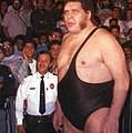 André the Giant in the late '80s crop.jpg