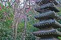 Ankokuronji-Garden.jpg
