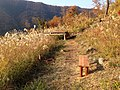 Aone, Midori Ward, Sagamihara, Kanagawa Prefecture 252-0162, Japan - panoramio (37).jpg