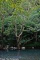 Aoos River 1.jpg