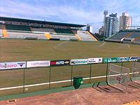 Arena Condá Novo gramado.jpg