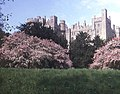 Arundel Castle in the spring - geograph.org.uk - 809645.jpg