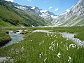 At Val Frisal - plain of Frisal.jpg