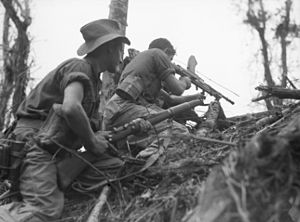 Two soldiers crouching on an incline in jungle terrain.