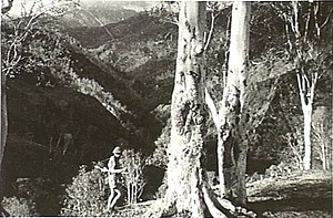 Australian commando in Timor 1942.jpg