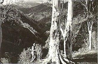 2/2nd Commando Squadron (Australia) - An Australian commando in the mountains of Timor on 12 December 1942.