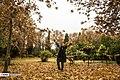 Autumn in Eram Garden 2019-12-09 06.jpg
