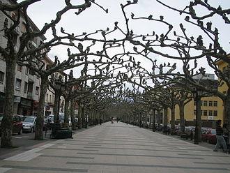 Torrelavega - Avenida de España (Avenue of Spain).