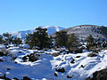 BLM Winter Bucket List -18- Craters of the Moon National Monument, Idaho, to Walk (in Snowshoes) on the Moon (16089845569).jpg