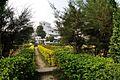 Back Garden - Prayas Green World Resort - Sargachi - Murshidabad 2014-11-29 0207.JPG