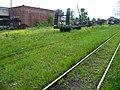 Baksheevo depot of Shatura narrow gauge railway (30538846214).jpg