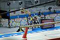 Balance 5 2015 Pan Am Games.jpg