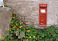 Ballidon's postbox with nasturtiums - geograph.org.uk - 953415.jpg