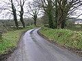 Ballyrenan Road - geograph.org.uk - 1176714.jpg