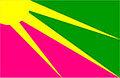 Bandeira-novarosalandia-to.jpg