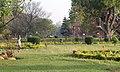 Bangalore Central Park (48186395142).jpg