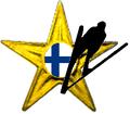 Barnstar SJ-FIN.PNG