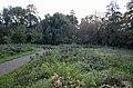 Bassum 25100700008 Stiftsgärten.jpg