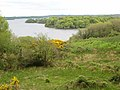 Bay at the north-west corner of Lough Key - geograph.org.uk - 801238.jpg