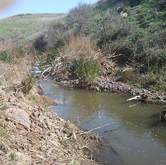 Bazelet River - The Bazelet River