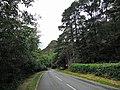 Beddgelert, UK - panoramio - IIya Kuzhekin.jpg