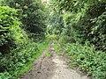 Benkid77 Talbot Avenue footpath 1 240709.JPG