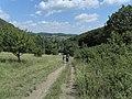 Beroun-Tetín-Srbsko - panoramio (52).jpg