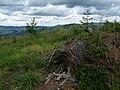Beskid Żywiecki 1 - panoramio.jpg
