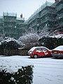 Bessborough Place Pimlico - geograph.org.uk - 1114551.jpg