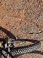Bike wheel 2.jpg