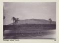 Bild från familjen von Hallwyls resa genom Egypten och Sudan, 5 november 1900 – 29 mars 1901 - Hallwylska museet - 91663.tif