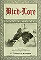 Bird-lore (1920) (14727810356).jpg