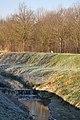 Bird - Nonantola (MO) Italy - 22 December 2012 - panoramio.jpg
