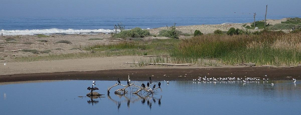 Emma Wood State Beach - Wikipedia