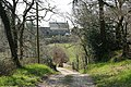 Bishop's Nympton, edge of Week Wood - geograph.org.uk - 393639.jpg