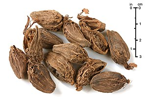 Black cardamom - Black cardamom fruit as used as spice