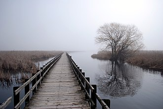 Point Pelee National Park - Boardwalk in April